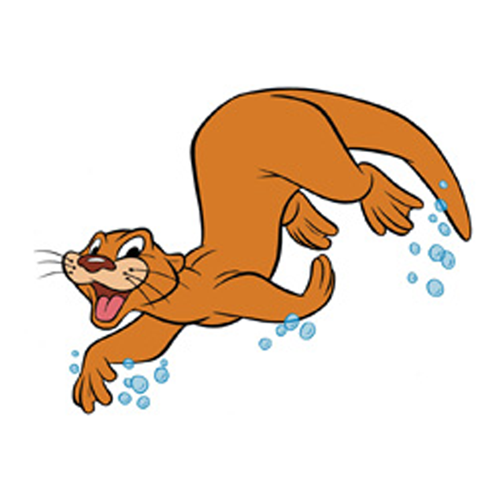 Competition - Otters