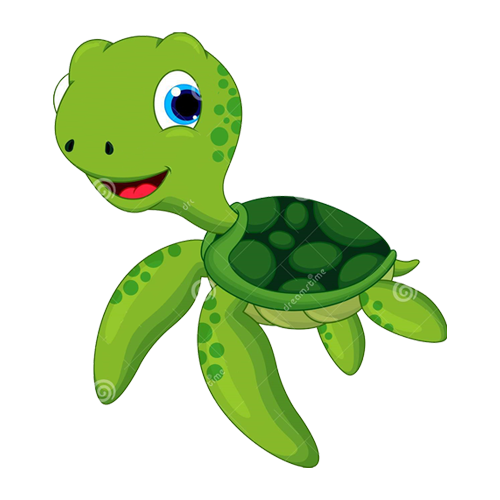 Advanced - Turtles